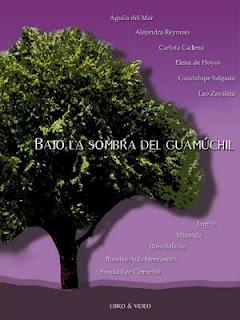 Presentación del Libro el 7 de julio en CIDECI Uni-Tierra, San Cristóbal de Las Casas, Chiapas. Historias de vida de mujeres presas en el CERESO...
