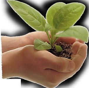 Especial llamado en defensa del maíz americano Llamado mundial a la acción directa no violenta En el marco del festival internacional Pachamama Kokopelli (http://www.kokopelli-pachamama.com/?lang=es_es)en el...