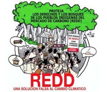 CHIAPAS NO QUIERE REDD+ Del 25 al 28 de septiembre de 2012 los gobiernos subnacionales de seis países del mundo se reunirán en esta...