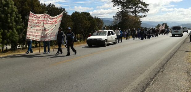 El día de hoy 22 de Enero 2012, a las 8:00 am, desde Teopisca, iniciamos una marcha hacia el Palacio de Gobierno de la Capital...