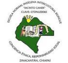 Desde el 03 de septiembre de 2013, estudiantes la escuela normal indígena bilingüe Jacinto Canek se sumaron a la lucha contra la reforma educativa que...