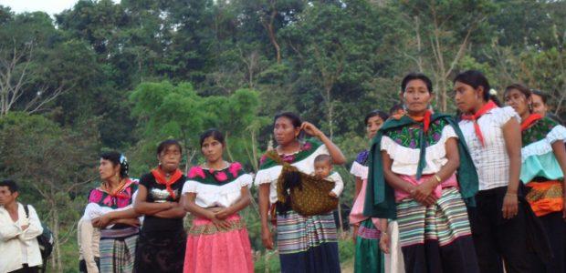 Ubicado en el noreste chiapaneco, el Ejido de San Sebastián Bachajón, adherente a la Sexta Declaración de la Selva Lacandona del EZLN, mantiene desde hace...