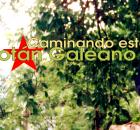 """El pasado 2 de mayo José Luis Solís López """"Galeano"""" fue asesinado por integrantes del grupo paramilitar Central Independiente de Obreros Agrícolas y Campesinos Histórica..."""