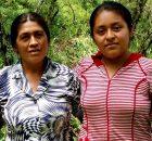 La familia Rodríguez López radica en el municipio de Olintla, en la Sierra Norte de Puebla, desde hace tres generaciones. Vive cerca de la plaza...