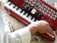 los-llanos---acordeon