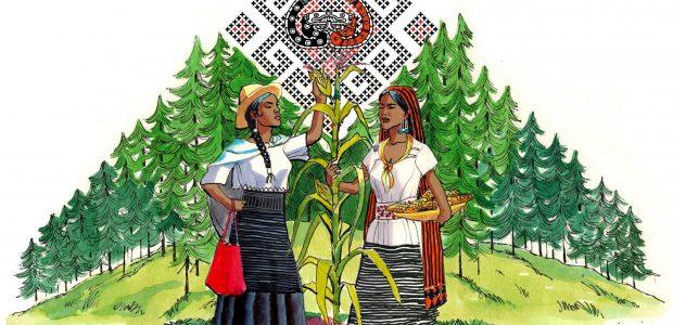 Los que somos el Congreso Nacional Indígena; pueblos, naciones, tribus y barrios indígenas de este país, hacemos un llamado a los pueblos de México indígenas...