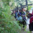 Compañeras artesanas de la Organizacion de la Sociedad Civil Las Abejas anuncian en un comunicado su presencia en la ciudad de San Cristobal de Las...