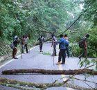 Crónica de las primeras horas del bloqueo en la carretera Palenque-Ocosingo, a la altura del cruce del poblado Agua Azul, en resistencia contra el despojo...