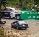 Ejidatarios priístas resguardados por varias patrullas policiacas y camiones de la policía estatal, han entrado durante los últimos días a la zona de Agua Azul...