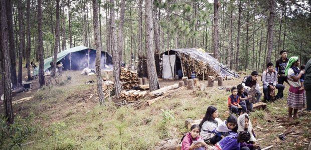 El sábado 7 de marzo más de 250 personas de distintas comunidades acompañaron a las familias desplazadas del poblado Primero de Agosto. El video muestra...