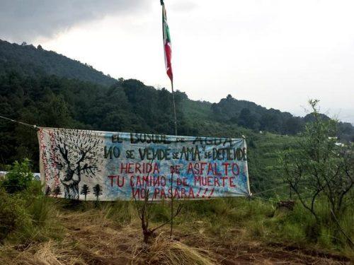 xochi no se vende @regeneracion_r