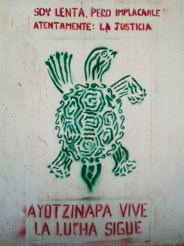 stencil tortuga ayotzi