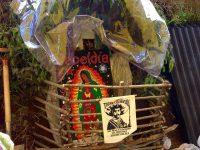 Virgen Yaqui en Xochi @masde131