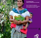 San Cristóbal de las casas a 24 de noviembre 2015 A organizaciones civiles y de base A la sociedad civil nacional e internacional A los...