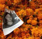 México, D.F., 25 de noviembre, 2015.- A punto de iniciar esta la XI Caravana de Madres Centroamericanas que Buscan a sus Hijos Desaparecidos en Transito...