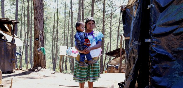 Fuente: Hij@s de la tierra El 23 de febrero de 2016 se cumplió un año del desplazamiento forzado de 60 personastojolabales del poblado de Primero...