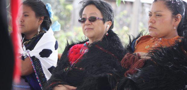 La relatora indígena del ONU visitó a los víctimas y sobrevivientes de ACTEAL 14 de noviembre de 2017 Visita de la relatora indígena del ONU...