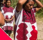 Medios libres, comunitarios, autónomos, independientes Prensa nacional e internacionales Sociedad civil  Les solicitamos difundir ampliamente el promo y video de Voces Desplazadas En Chalchihuitán,...